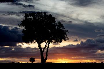 Sunset in Kenya.
